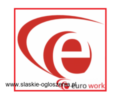 Pracownik produkcji (Holandia) 11,59 euro brutto/h + dodatki